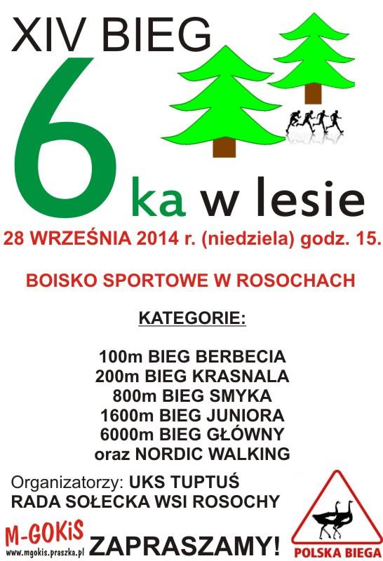 """6ka w Lesie"" – Rosochy"