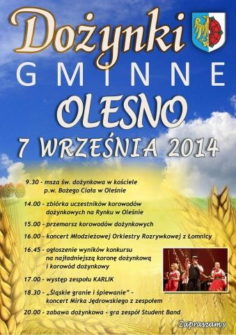 Dożynki Gminne – Olesno