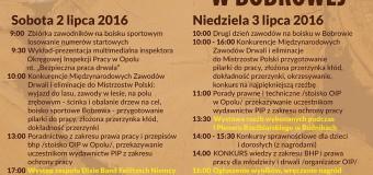 XVII Międzynarodowe Zawody Drwali w Bobrowej