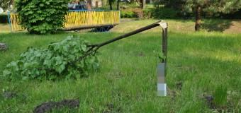 17-latek i 20-latek zatrzymani za połamanie drzewek na oleskiej promenadzie