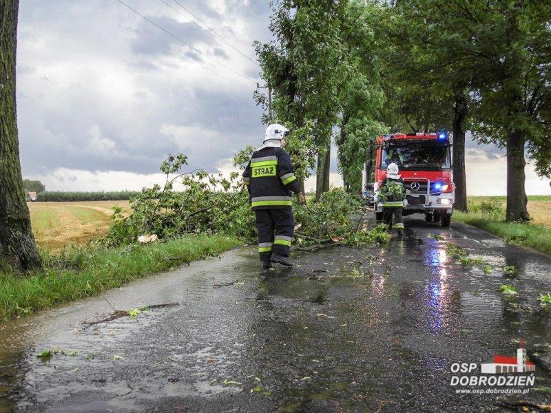 Pozrywane dachy, powalone drzewa – skutki gwałtownej burzy