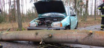 Samochód uderzył w przewrócone na drogę drzewo