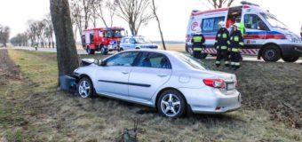 Samochód uderzył w drzewo. Dwie osoby poszkodowane