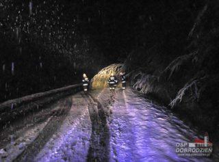 sniezyca1