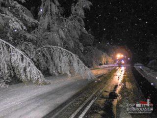 sniezyca11