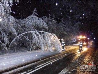 sniezyca14