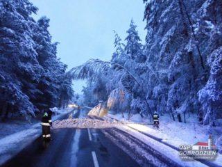 sniezyca15