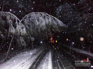 sniezyca4