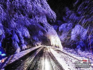 sniezyca7