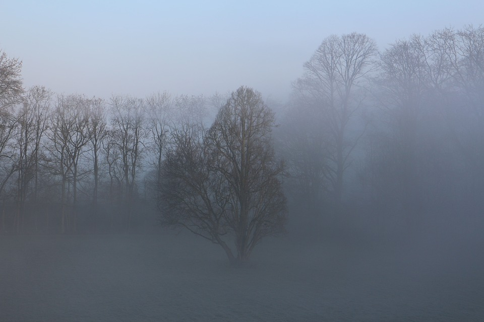 Uwaga! Gęsta mgła