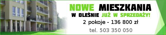 nieruchomosciolesno.pl