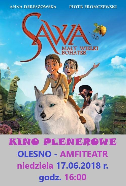 sawa1
