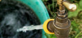 Susza – zakaz podlewania w wyznaczonych godzinach. Możliwe braki w dostępie wody