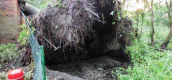 Nawałnica w gminie Zębowice. Zerwany dach, przewrócone drzewa