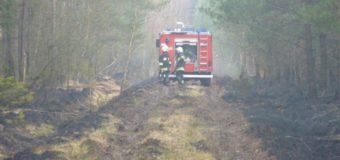 Podpalał w okolicy Bodzanowic. Usłyszał zarzuty