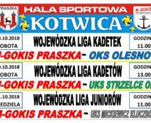 Siatkówka Praszka – Ligi Wojewódzkie
