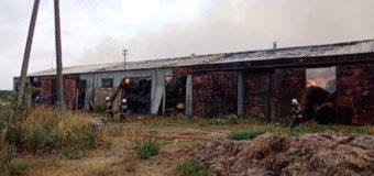 28 zastępów straży pożarnej gasiło pożar w Uszycach. Akcja trwała kilkanaście godzin!