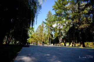 190905-laicoti-pictures-006