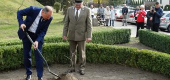 Olesno ma oficjalny sztandar oraz Dąb Niepodległości