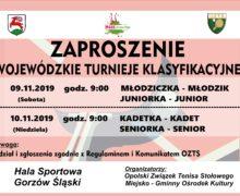 Wojewódzkie Turnieje Klasyfikacyjne – tenis stołowy – Gorzów Śląski