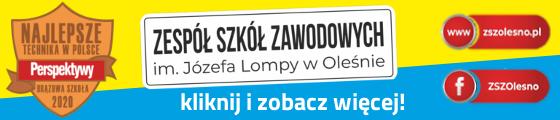 ZSZ_2020