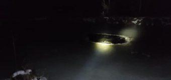 Strażacy uratowali kucyka, pod którym załamał się lód